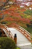 Röd bro på en höstträdgård Royaltyfri Foto