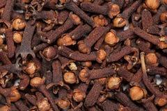 Röd brunt kärnar ur Syzygiumaromaticum för kryddnejlika (loong Indien) royaltyfria bilder