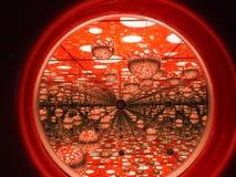 Röd brusande och rund champinjon Arkivfoto