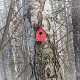 Röd bygga boask Arkivfoto