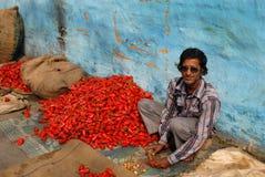 Röd chili Royaltyfria Bilder