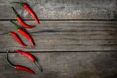 Röd chili Royaltyfri Fotografi