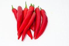 Röd chili royaltyfri foto