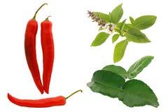 Röd chili, basilika, kaffirisolat på vit Fotografering för Bildbyråer