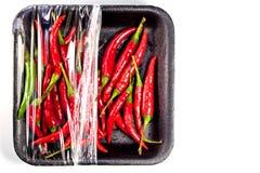 Röd chili i skum- och plast-packe Royaltyfri Fotografi