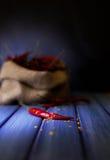 Röd chili på blå bakgrund Royaltyfria Foton