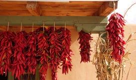 Röd chili Ristas Arkivbilder