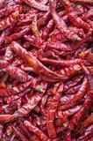 Röd chilibakgrundsmodell Fotografering för Bildbyråer