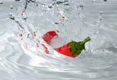 Röd chilifärgstänk fotografering för bildbyråer