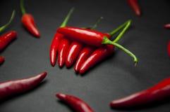 Röd chilipeppar royaltyfri fotografi