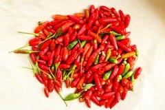 Röd Chilipeppar Arkivfoton