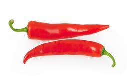 Röd chilipeppar som isoleras på white Fotografering för Bildbyråer