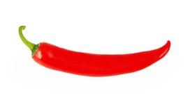 Röd chilipeppar som isoleras på white Arkivfoton