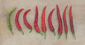 Röd chilis Arkivbild