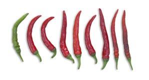 Röd chilis Arkivfoto