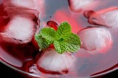 Röd coctail med mintkaramellslut upp Royaltyfria Bilder