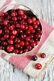 Röd cranberry arkivbild