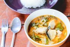 Röd curry med fisken Royaltyfri Fotografi