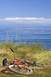 Röd cykel Royaltyfri Bild