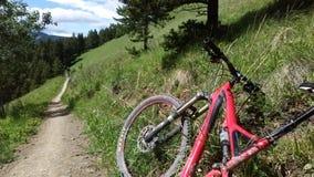 Röd cykel royaltyfri foto