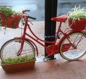 Röd cykel i Italien med blommor Royaltyfria Foton