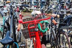 Röd cykel på en cykelparkeringsplats Royaltyfri Fotografi
