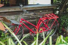 Röd cykel som är gammal i trädgården Arkivfoto
