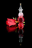 Röd doft Royaltyfria Foton