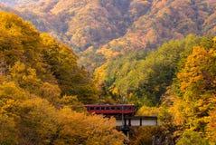 Röd drevpendlare Fukushima Japan Royaltyfri Foto