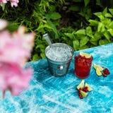 Röd drink med is royaltyfri fotografi