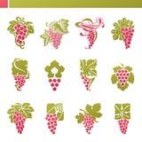 Röd druva med leafen. Set för vektorlogomall. royaltyfri illustrationer