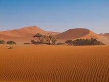 Röd dyn av den Namid öknen arkivbilder