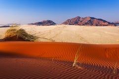 Röd dyn och berg i Namibia, Afrika Royaltyfria Bilder