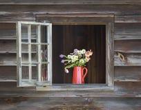 Röd emaljerad kanna med blommor i ett ladugårdfönster fotografering för bildbyråer