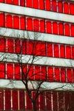 Röd fönsterskyskrapa Royaltyfri Foto