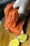 Röd fisk arkivbild