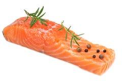 Röd fisk Rå laxfilé med rosmarinisolaten på vit bakgrund royaltyfri foto