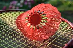 Röd fjäderboll för badminton royaltyfria bilder