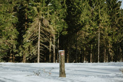 röd fotvandra slinga i vinter arkivbild