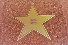 Röd Foxx stjärna, St Louis Walk av berömmelse fotografering för bildbyråer
