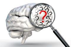 Röd frågefläck på förstoringsglaset och mänsklig hjärna Royaltyfri Bild