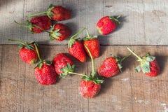 Röd frukt Royaltyfri Foto