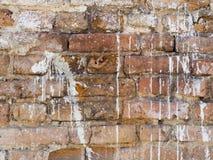 Röd gammal för väggtextur för tegelsten vit målad bakgrund Arkivfoto