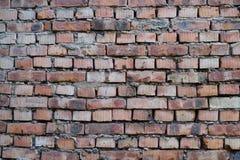 Röd gammal tegelstenvägg textur Royaltyfri Fotografi