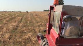 Röd gammal traktor för bondemandrev mellan åkerbruka fält för lantgård stock video