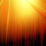 Röd gardin med strålkastaren Royaltyfri Fotografi