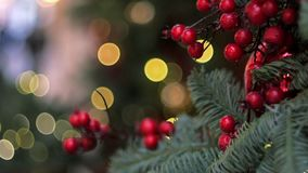 Röd garnering för bärXmas-träd lager videofilmer