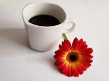 röd gerberablomma och en kopp kaffe på den vita tabellen royaltyfria foton