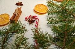 Röd godiskotte med anisstjärnaslut upp på den vita bakgrunden som dekoreras med kanelbruna pinnar, torkade apelsiner och den grön Royaltyfri Foto