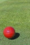 Röd golfboll Arkivbilder
